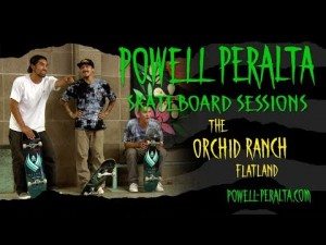 Powell Peralta Skateboard Sessions - Orchid Flat Land